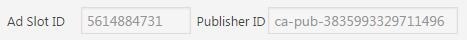 ad_slot_publisher_id