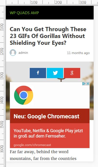 Google AdSense AMP website